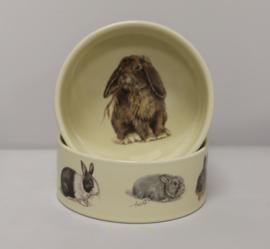 Feedingtray Rabbit, per 1 piece