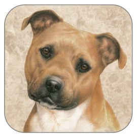 Coaster Staffordshire Terrier, per 3 pieces