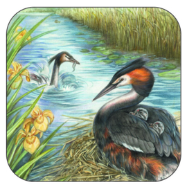Coaster Red Throated Diver, per 3 pieces