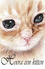 Hoera een kitten 2