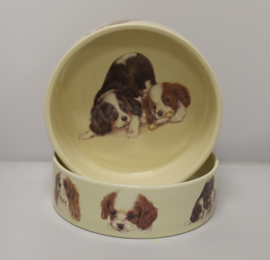 Feedingtray Cavalier King Charles Terrier, per 1 piece