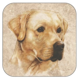 Coaster blonde Labrador, per 3 pieces