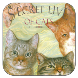 "Coaster ""Secret Live of Cats 1"", per 3 pieces"