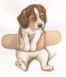 Beterschap - Pleister over Beagle, per stuk