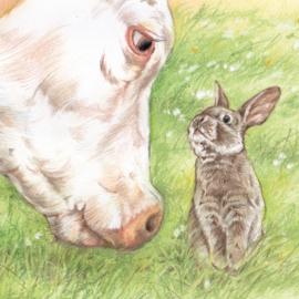 Koe & Konijn - wie kan het meeste gras op....