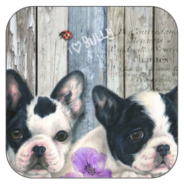 Coaster French Bulldog, per 3 pieces