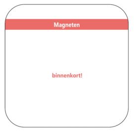 Magneten - banner