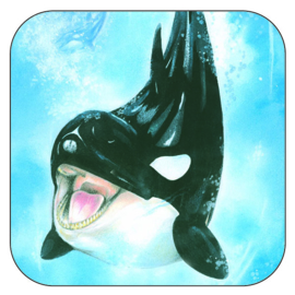 Coaster Killer Whale, per 3 pieces