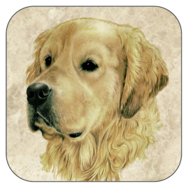 Coaster Golden Retriever, per 3 pieces