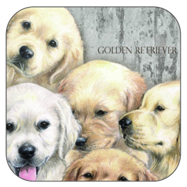 Coaster Golden Retrievers, per 3 pieces