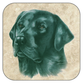 Coaster black Labrador,  per 3 pieces