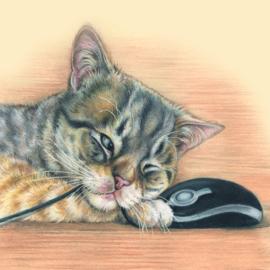 Themakaarten - serie 1 - Katten (4 x 2 kaarten)
