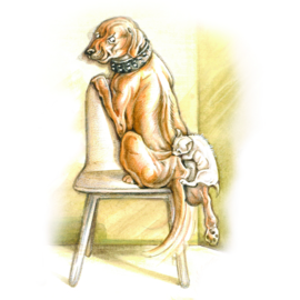 Wachtkamer emotie: hond met bijtwond door kat