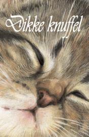 Dikke knuffel Kat
