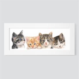 Kittencollage