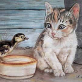 Kat & Kuiken - vrienden voor het leven