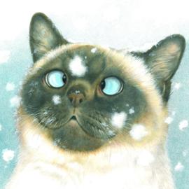 Van sneeuwvlokjes ga ik altijd een beetje scheel kijken....