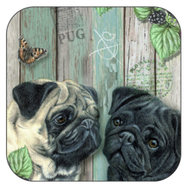 Coaster Pugs, per 3 pieces