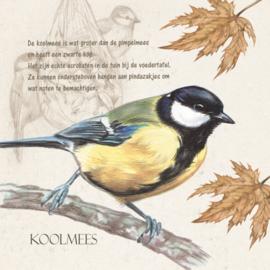 Themakaarten - serie 7 - Vogels in de natuur 1 (4 x 2 kaarten)