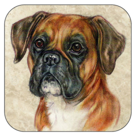 Coaster Boxer, per 3 pieces