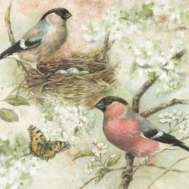 Een prachtige tekening, in vogelvlucht..