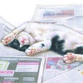 Val een beetje in slaap van al die saaie nieuwsberichten..