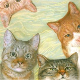 Kattencollage, per stuk