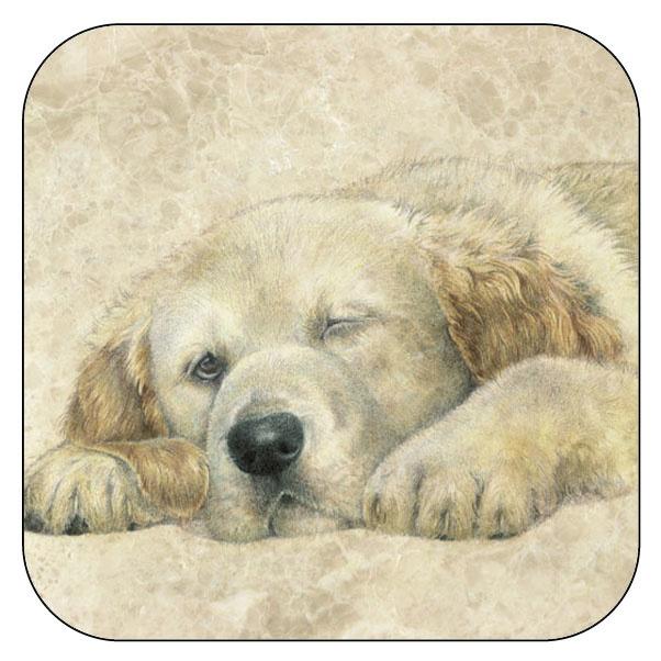 Onderzetter Golden Retriever pup - afgeronde hoeken - 9,5 x 9,5 cm, per 3 stuks
