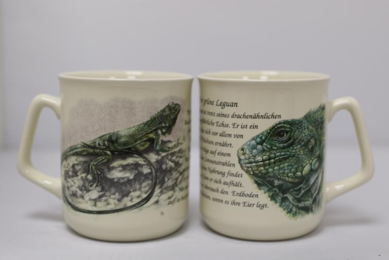 Mug Iguana - per 3 pieces