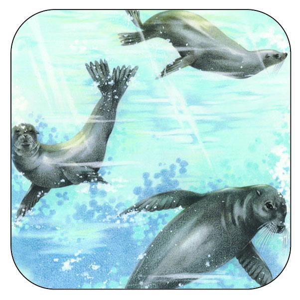Onderzetter Zeehonden - afgeronde hoeken - 9,5 x  9,5 cm, per 3 stuks
