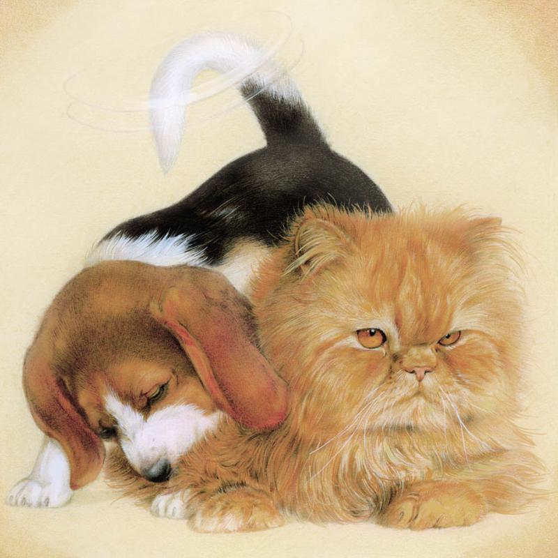 Vriendschap - Beagle maakt hof bij pers, per stuk