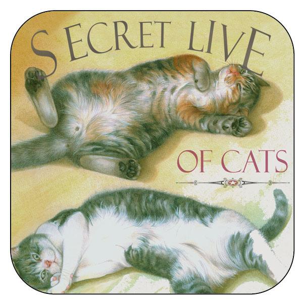 """Onderzetter Katten """"Secret Live of Cats""""3 - afgeronde hoeken - 9,5 x 9,5 cm"""