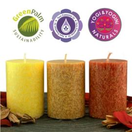 Set stearine kaarsen fairtrade - 3 stuks