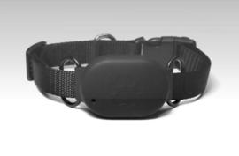 Huisdieren GPS Tracker met houder en halsband