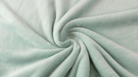 Teddy fleece mint