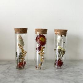 Glazen buisje met kurken deksel (per stuk) - medium