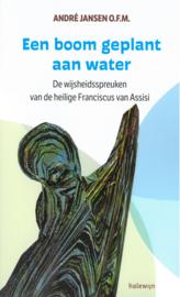 Een boom  geplant aan water | De wijsheidsspreuken van de heilige Franciscus van Assisi