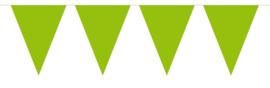 Vlaggen 10 meter Groen