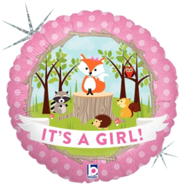 "Sempertex 18"" It's a girl"