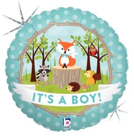 "Sempertex 18"" It's a boy"