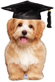 "Graduation Puppy 32"""