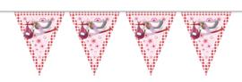 Vlaggenlijn 10 meter Roze Ooienvaar Geboorte Meisje