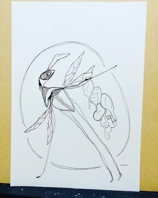 Sillyfish Hugging
