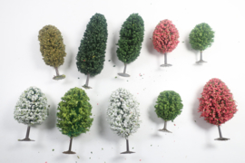 Bomenset Loofbomen