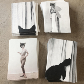 4 postcards-cats