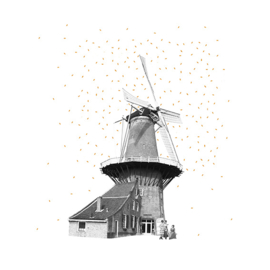 molen de roos - grains