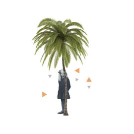 girl with palmtree
