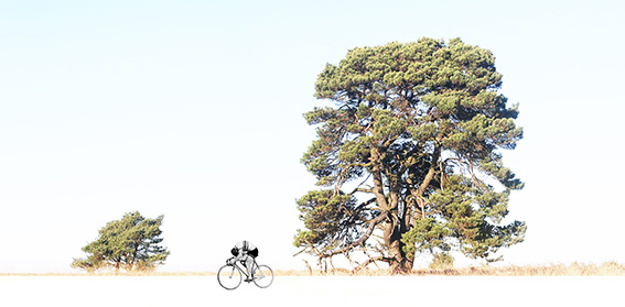 the lonely cyclist