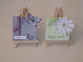 workshop 4 mini canvasjes