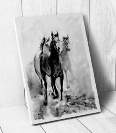 Kinderkamer CANVAS Horses